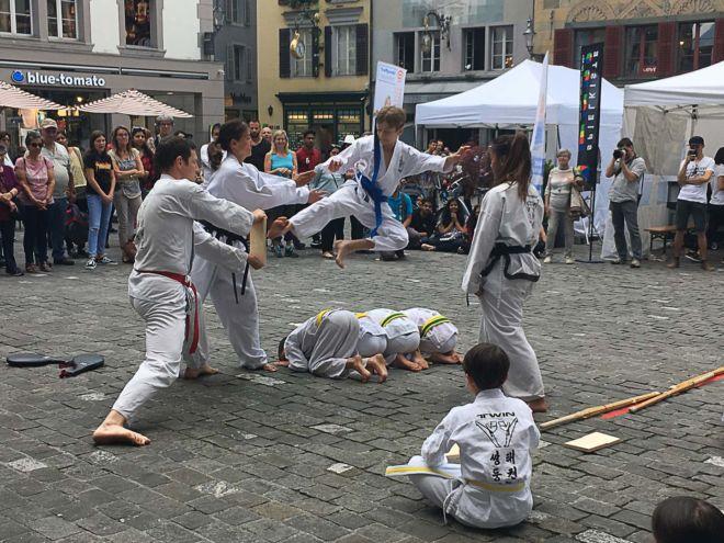 Twin Taekwondo_1-11